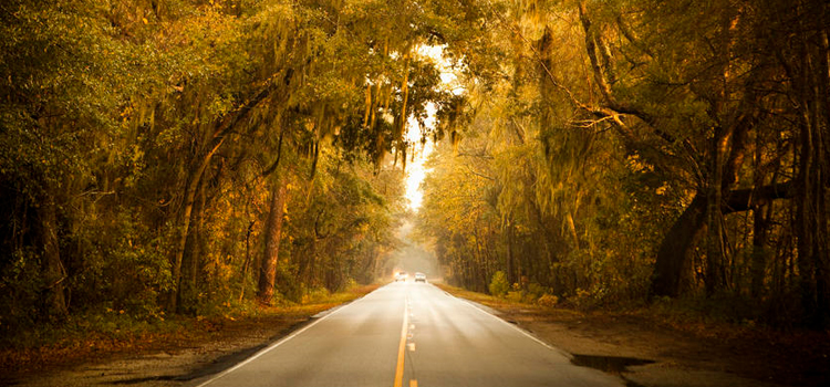 6 great american scenic byways ashley road, picture of ashley road american scenic byway